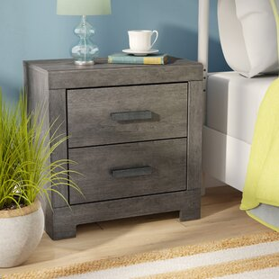 Rosen 2 Drawer Nightstand by Beachcrest Home