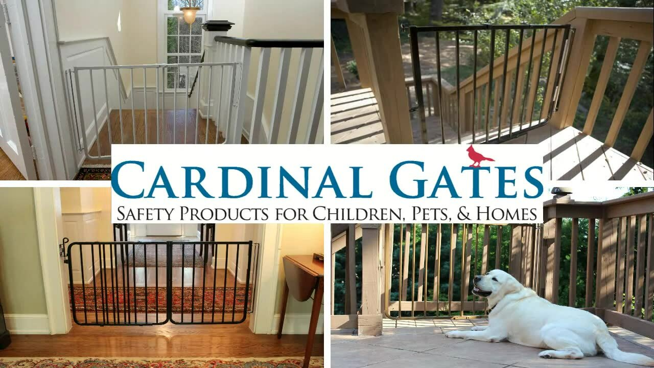 cardinal gates stairway special outdoor gate u0026 reviews wayfair