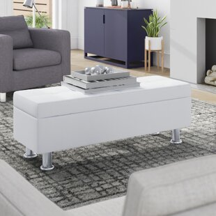 Rosina Storage Ottoman by Zipcode Design