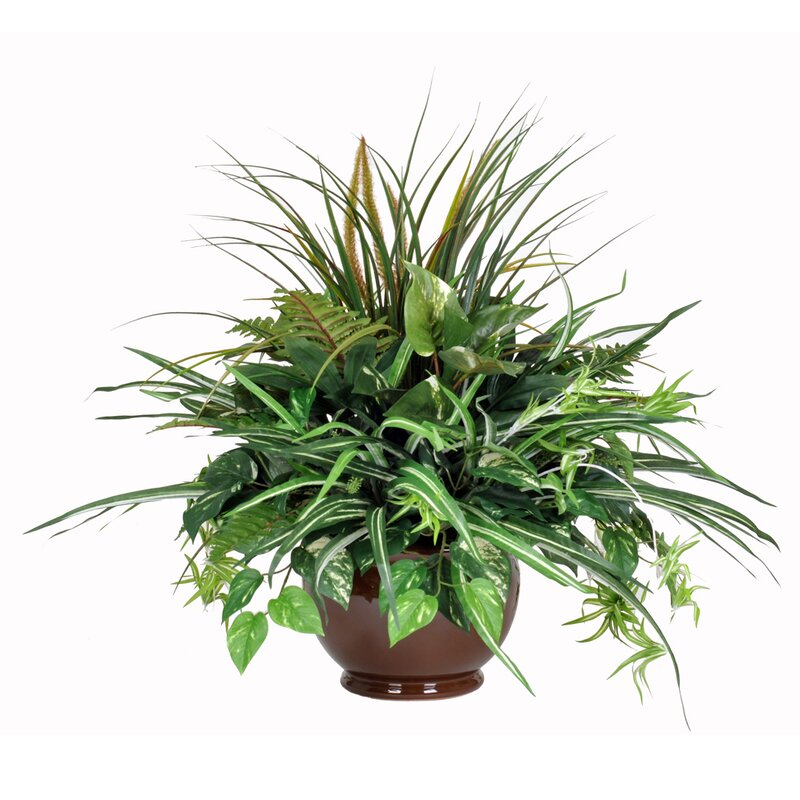 Bay Isle Home Artificial Foliage Plant In Pot Wayfair