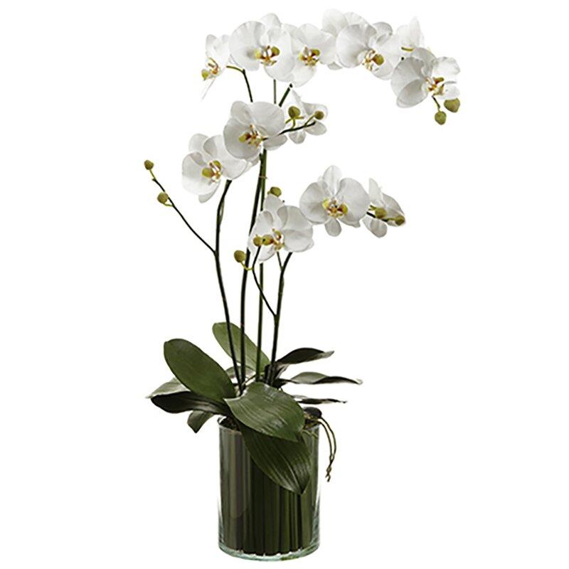 floral home decor orchid floral design wayfair.htm house of hampton silk orchids floral arrangement in vase wayfair  silk orchids floral arrangement in vase