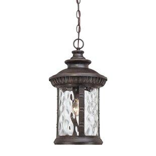 Astoria Grand Baxter 1-Light Outdoor Hanging Lantern