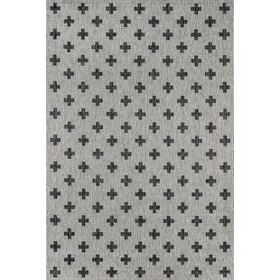 Umbria Gray Indoor/Outdoor Area Rug