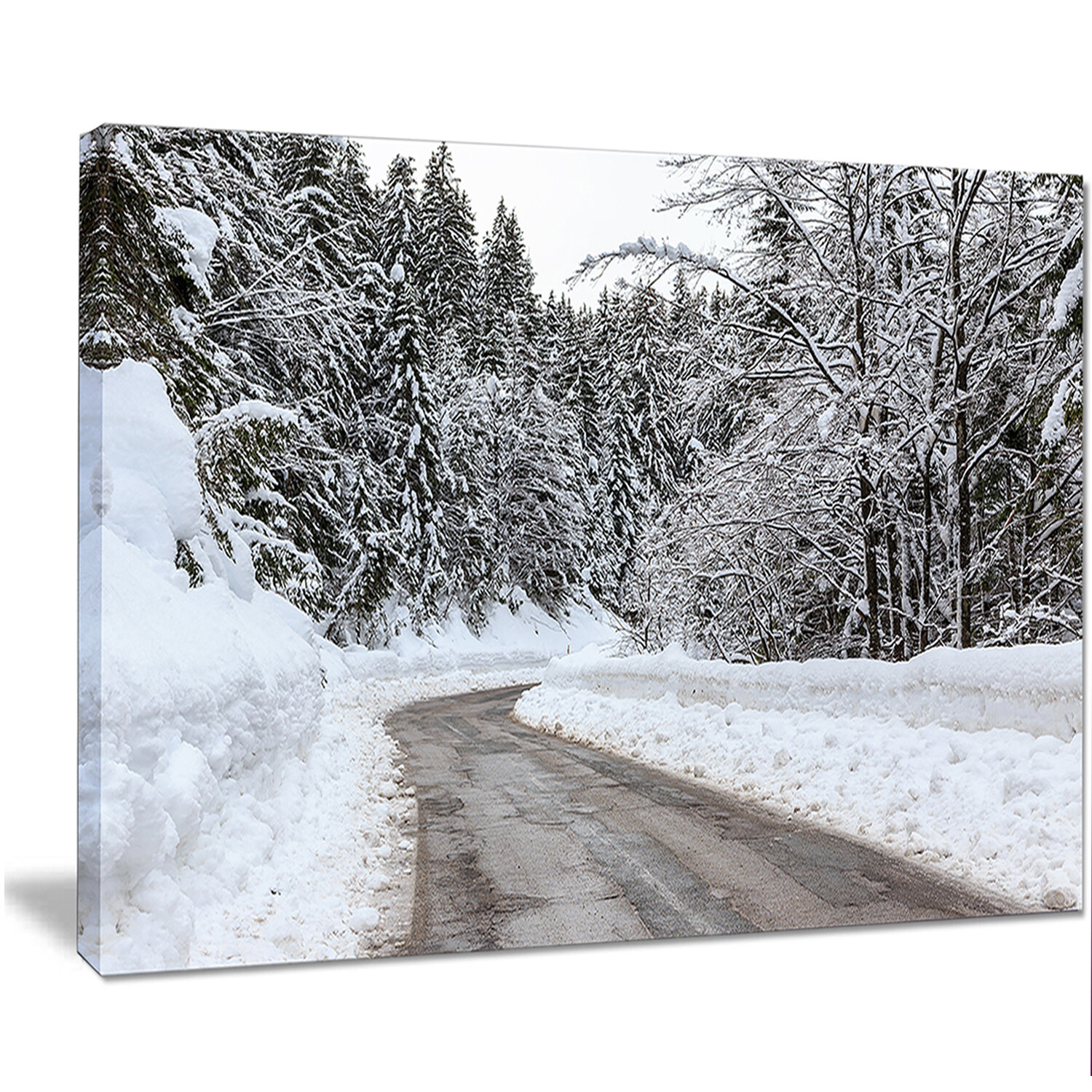 Designart Foggy Winter Road In Slovenia Photographic Print On Wrapped Canvas Wayfair