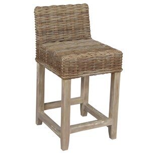 Baxter 24 Counter Stool Set of 2 by Furniture Classics