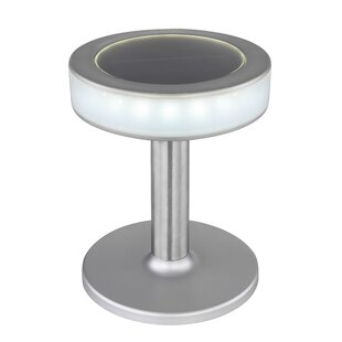 Argan 18 Light LED Pathway Light By Sol 72 Outdoor