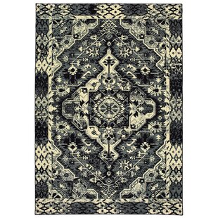 Hedden Tribal Medallion Black/Ivory Indoor/Outdoor Area Rug