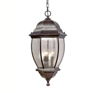 Best Reviews 3-Light Outdoor Wall Lantern By Mariana Home