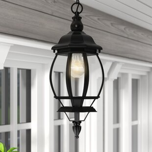 Reva 1-Light Outdoor Hanging Lantern