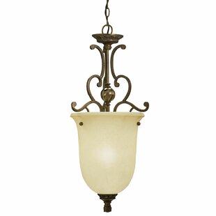 Forrest 1-Light Urn Pendant by Fleur De Lis Living