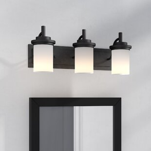 Three Posts Dashiell 3-Light Vanity Light