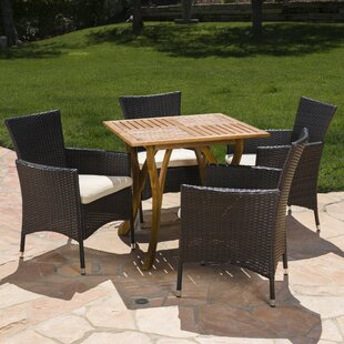 Meriam Outdoor 5 Piece Dining Set with Cushions