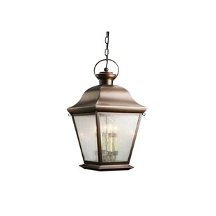 Three Posts Darrah 4-Light Glass Shade Outdoor Hanging Lantern
