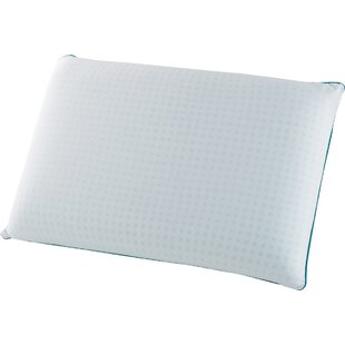 Ginsberg Gel Infused Memory Foam Standard Pillow (Set of 2)