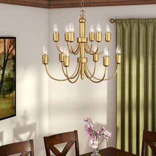 Darby Home Co Lagunas 1-Light Chandelier
