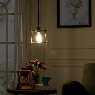 Gracie Oaks Schutte 1-Light Novelty Pendant