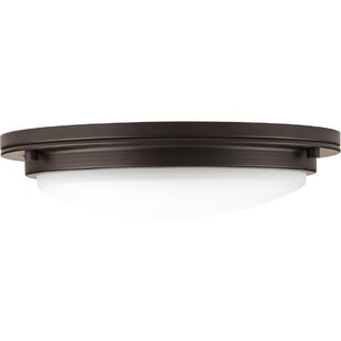Winston Porter Vanderhoff 1-Light LED Flush Mount