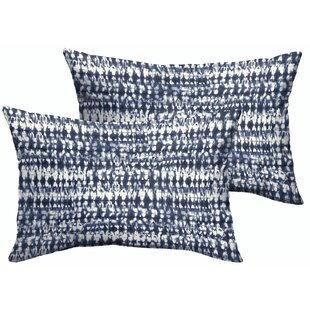 Modern Lumbar Throw Pillows Allmodern