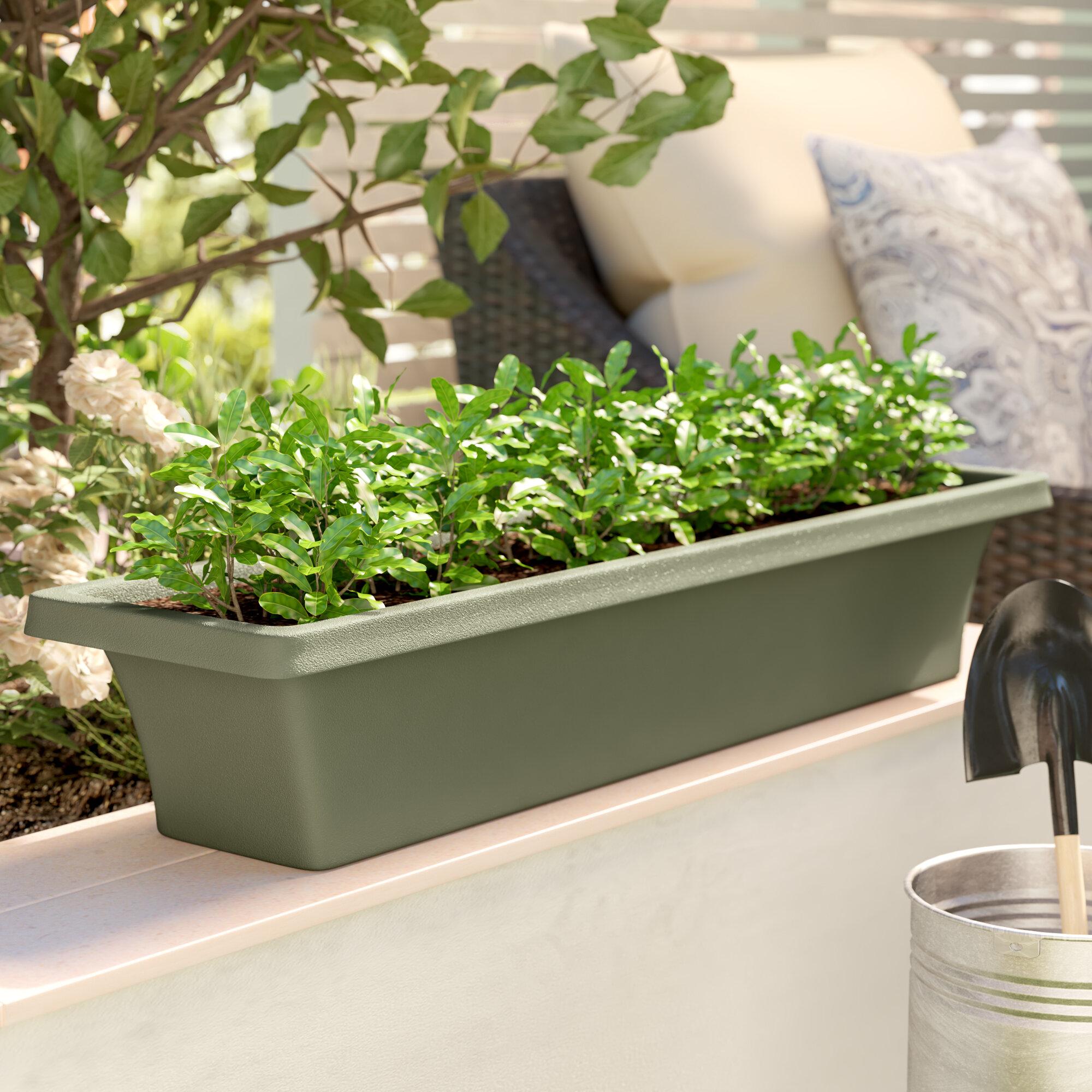 Ellenton Coffee Table With Storage: Sol 72 Outdoor Ellenton Plastic Window Box Planter
