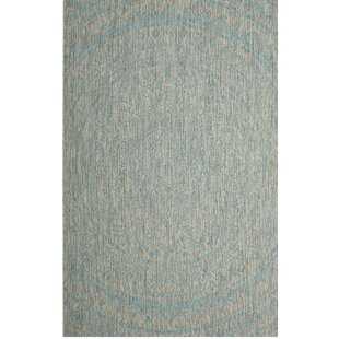 Amedee Aqua Indoor/Outdoor Area Rug
