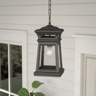 August Grove Signe 1-Light Outdoor Hanging Lantern