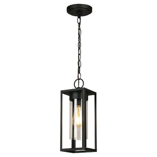 Hadassah 1-Light Outdoor Hanging Lantern