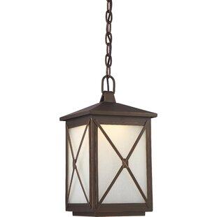 Laurel Foundry Modern Farmhouse Sagebrush 1-Light LED Outdoor Hanging Lantern