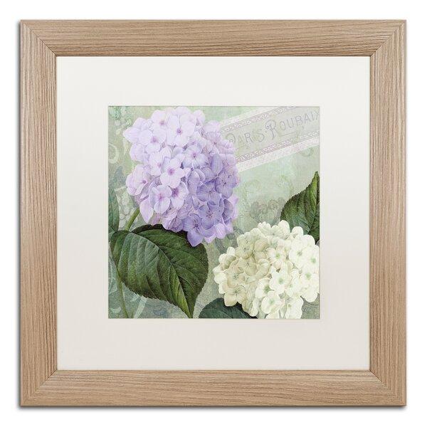 Trademark Art Hortensia 1 By Color Bakery Framed Graphic Art - Color-hortensia