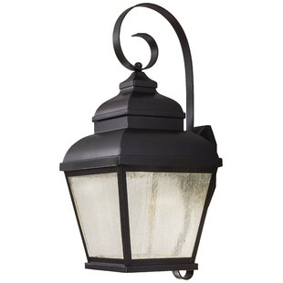 Where buy  Dorchester 1-Light Outdoor Wall Lantern By Darby Home Co