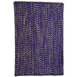 Braided Purple Area Rugs You Ll Love In 2021 Wayfair