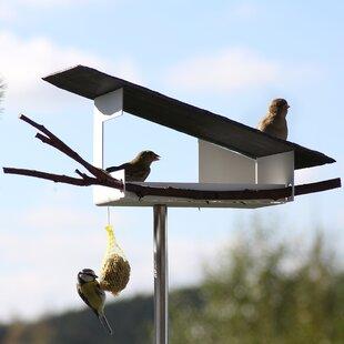 Futterstation Decorative Bird Feeder By Sol 72 Outdoor