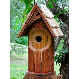 Heartwood The Woodcutter 16 in x 9 in x 8 in Birdhouse