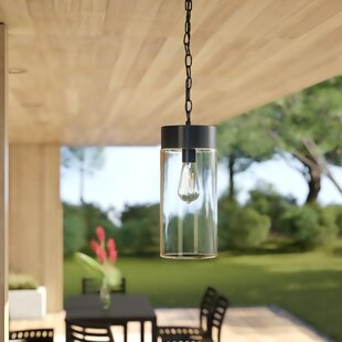 Cranmer 1-Light Outdoor Pendant