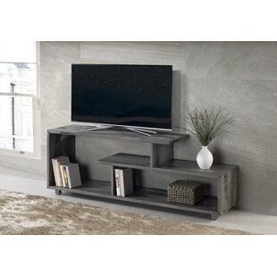 Wrought Studio Carrasco TV Stand for TVs up to 50