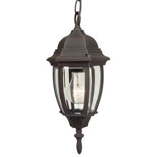 Oakhill 1-Light Outdoor Ha..