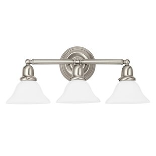 Affordable Price Darmstadt Traditional 3-Light Vanity Light By Three Posts