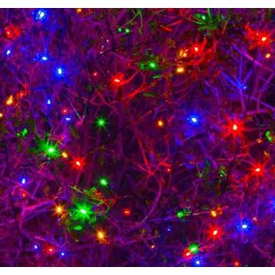 50-Light Fairy Light By The Party Aisle