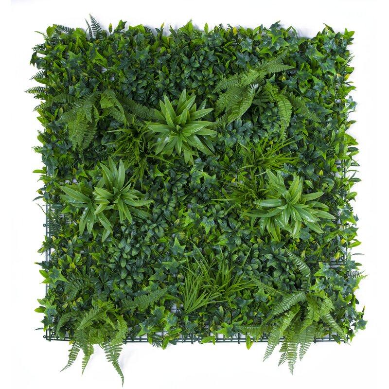 Gracie Oaks Variegated Wall Ivy Grass Wayfair