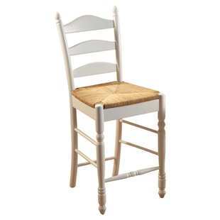 Shirk 24 Bar Stool (Set of 2) Winston Porter
