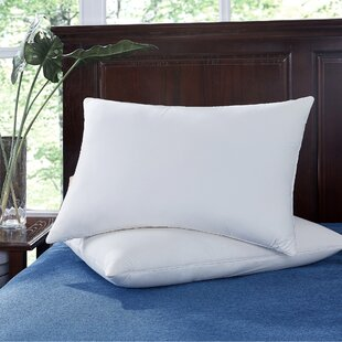 Natural Memory Foam Down and Feather Bed Pillow (Set of 2)