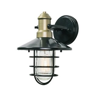 Williston Forge Jae 1-Light Outdoor Wall Lantern