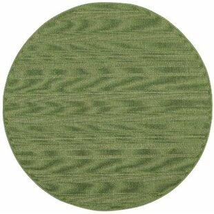 Whipple Green Indoor/Outdoor Area Rug by Ebern Designs