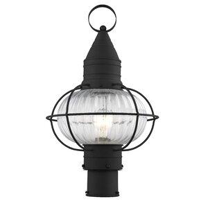 Wildwood Outdoor 1-Light Lantern Head