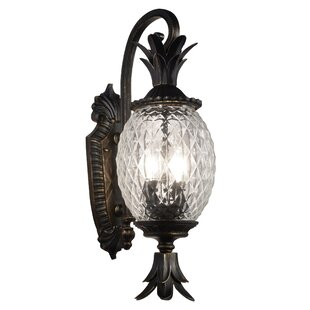 Bay Isle Home Tipton 2-Light Outdoor Sconce