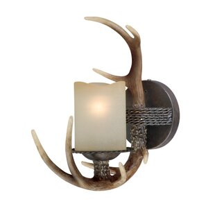 Port Chester 1-Light Bath Sconce by Loon Peak