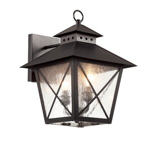 Buendia 2-Light Outdoor Wall Lantern by Charlton Home