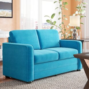 Lillian Ultra Lightweight Sleeper Loveseat by Latitude Run