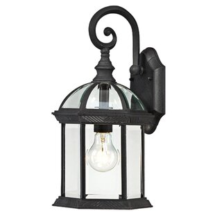 Vannest 1-Light Outdoor Wall Lantern By Charlton Home Outdoor Lighting