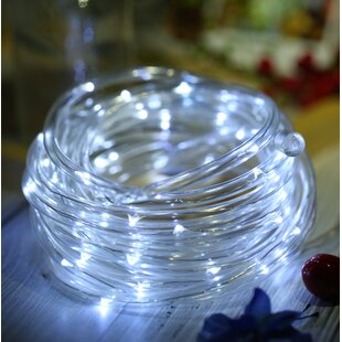 Symple Stuff Vera 50 LED Light Fairy String Lights
