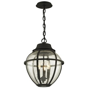 Darby Home Co Diallo 3-Light Outdoor Hanging Lantern